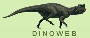 DinoWeb